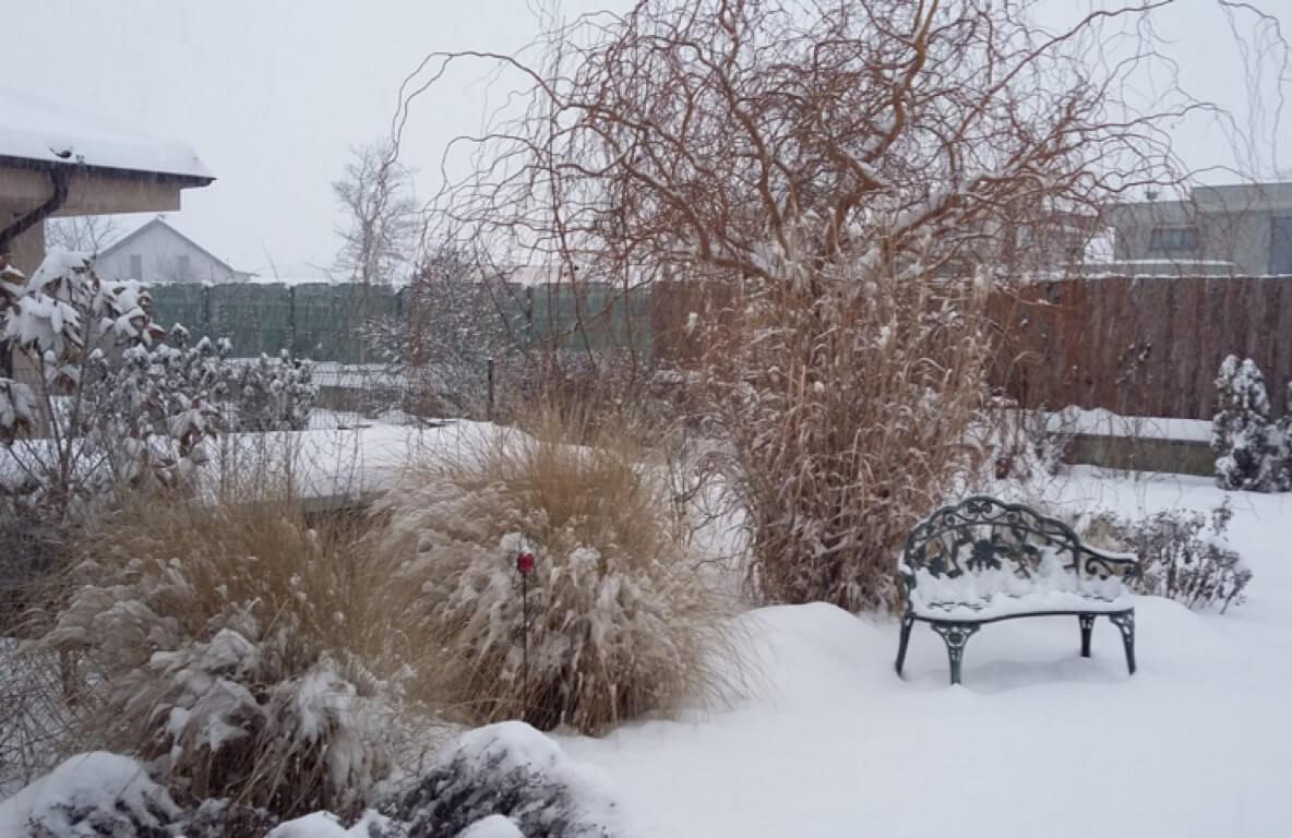 V zime po 2 rokoch